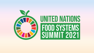 UN Food Systems Summit 2021
